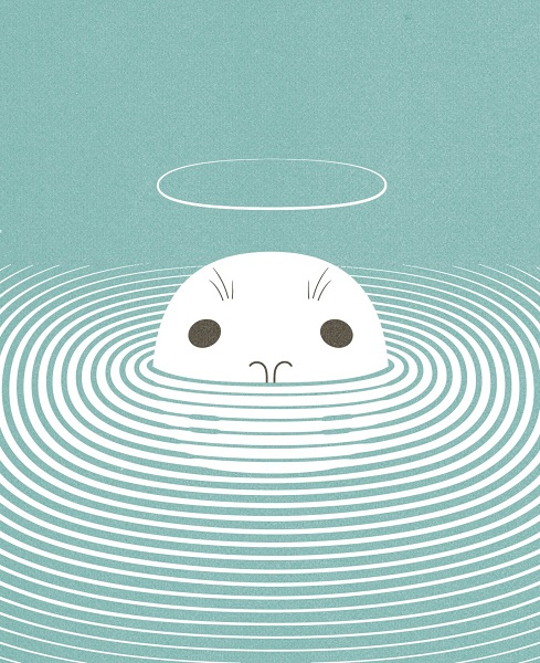 seal illustration print