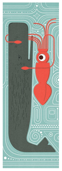sperm whale giant squid illustration